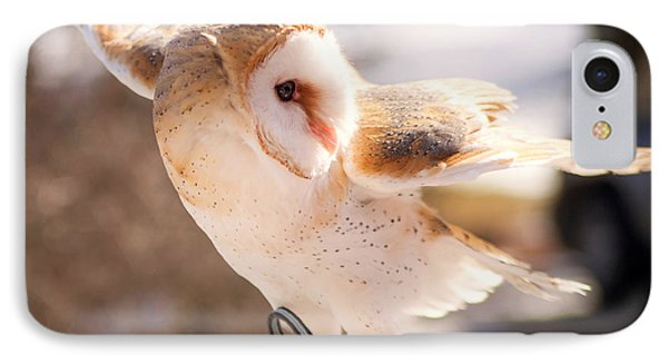 Barn Owl In The Breeze Phone Case by Lori England Zornes