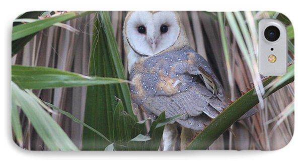 Barn Owl Phone Case by Joe Sweeney