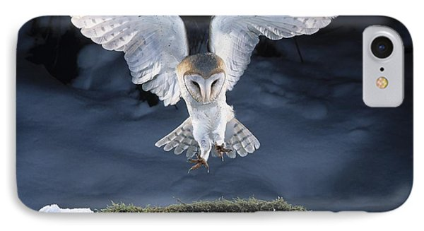Barn Owl Landing IPhone Case