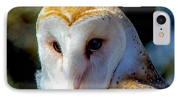 IPhone Case featuring the photograph Barn Owl Portrait by Constantine Gregory