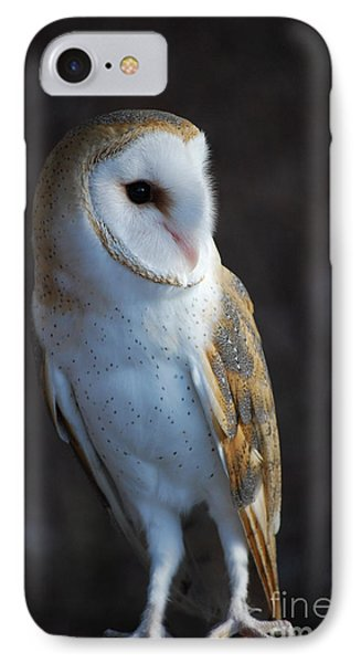 IPhone Case featuring the photograph Barn Owl by Sharon Elliott
