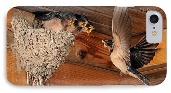 Barn Swallow Nest IPhone Case by Scott Linstead