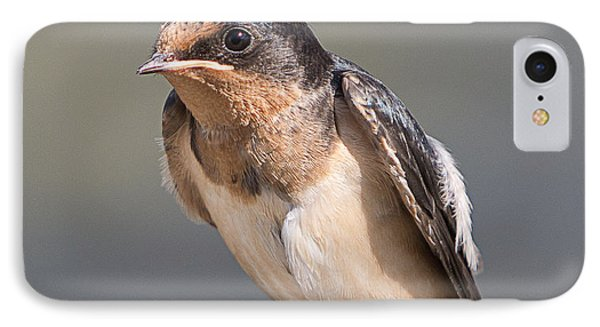 IPhone Case featuring the photograph Barn Swallow On Rope I by Patti Deters