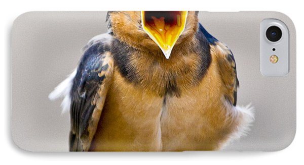IPhone 7 Case featuring the photograph Barn Swallow by Ricky L Jones