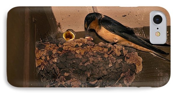 Barn Swallow IPhone Case by Ron Sanford