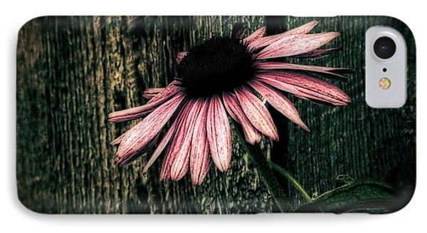 IPhone Case featuring the photograph Barnyard Coneflower by Marjorie Imbeau