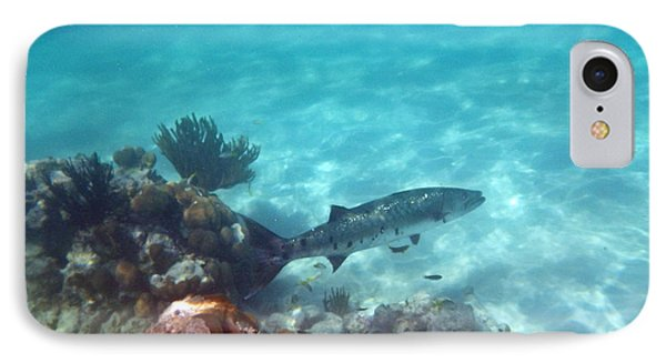 IPhone Case featuring the photograph Barracuda by Eti Reid