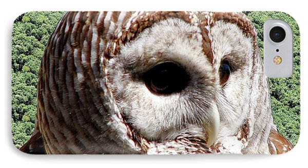 Barred Owl 2 Phone Case by Rose Santuci-Sofranko