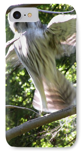 Barred Owl Angelic Liftoff IPhone Case by Brian Chase