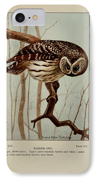 Barred Owl IPhone Case by Ernest Seton Thompson