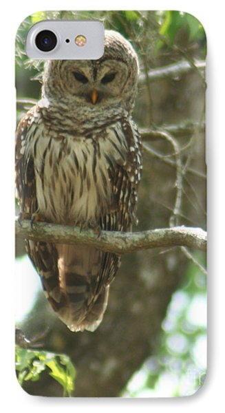 IPhone Case featuring the painting Barred Owl by Jimmie Bartlett