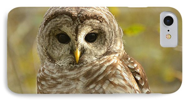 Barred Owl Phone Case by Nancy Landry