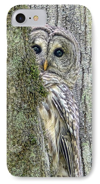 Barred Owl Peek A Boo Phone Case by Jennie Marie Schell
