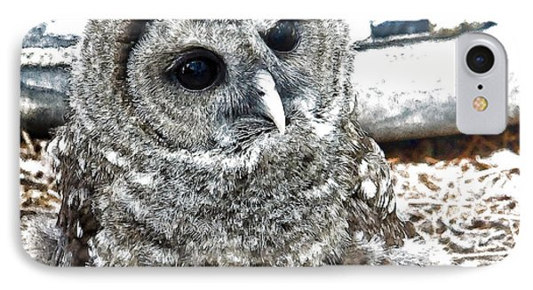 IPhone Case featuring the photograph Barred Owl Photo Art by Constantine Gregory