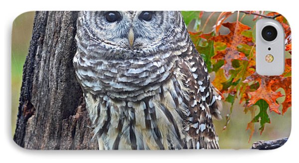 IPhone Case featuring the photograph Barred Owl by Rodney Campbell