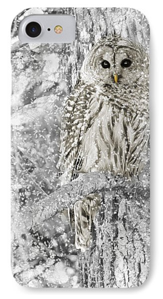 Barred Owl Snowy Day In The Forest Phone Case by Jennie Marie Schell