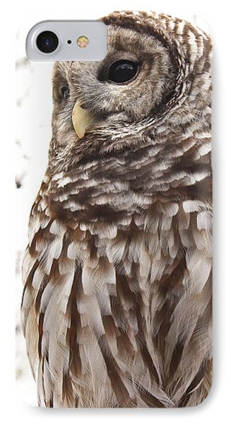 IPhone Case featuring the photograph Barred Owl by Tammy Schneider