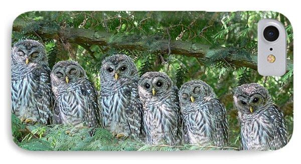 Barred Owlets Nursery Phone Case by Jennie Marie Schell