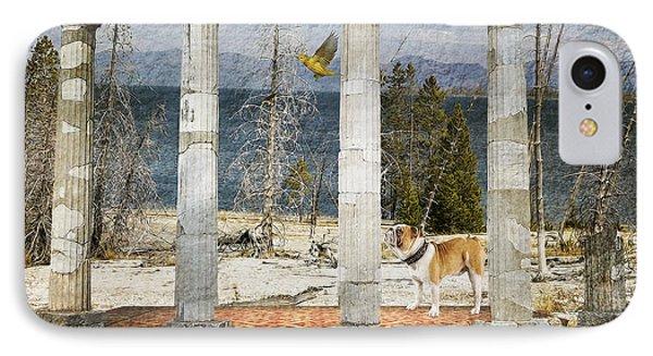 Barren Shoreline IPhone Case by Liane Wright