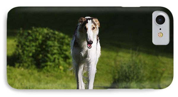 Barzoi Hound Running In A Woolf Like Posture IPhone Case by Christian Lagereek