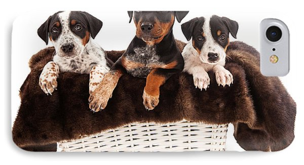 Basket Of Rottweiler Mixed Breed Puppies Phone Case by Susan Schmitz