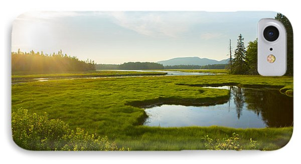 Bass Harbor Marsh At Dusk IPhone Case
