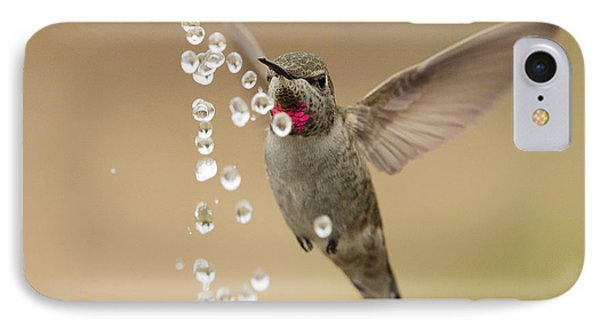 Bath Time For Anna's Hummingbird IPhone Case by Doug Herr