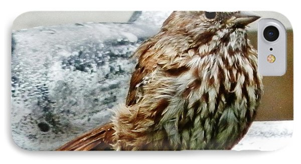 IPhone Case featuring the photograph Bathe Then Fluff by VLee Watson
