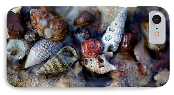Bauxite Shells And Sand. IPhone Case by Carole Hinding