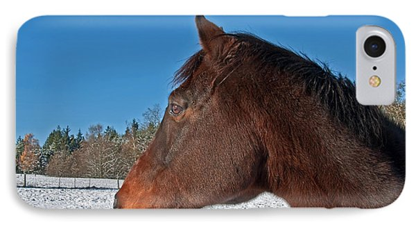 Bay Thoroughbred Horse Side View In Winter IPhone Case by Valerie Garner