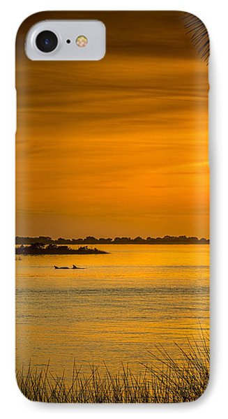 Bayport Dolphins Phone Case by Marvin Spates