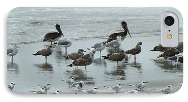 IPhone Case featuring the photograph Beach Birds by Judith Morris