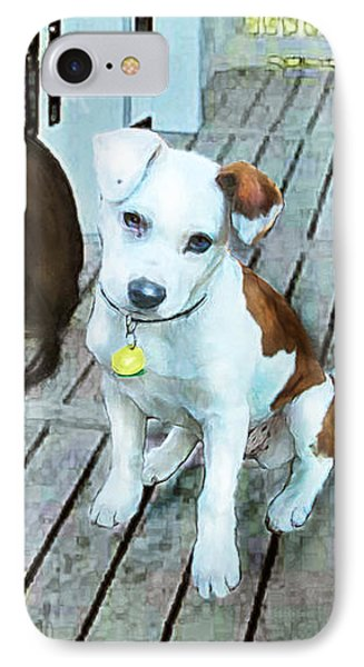 Beach Dog 1 IPhone Case by Jane Schnetlage