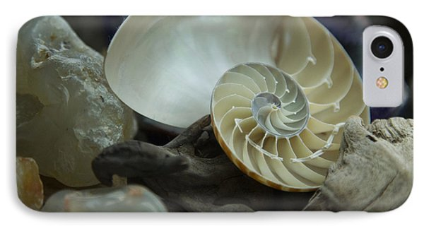 IPhone Case featuring the photograph Beach Treasures 2 by Jeanette French