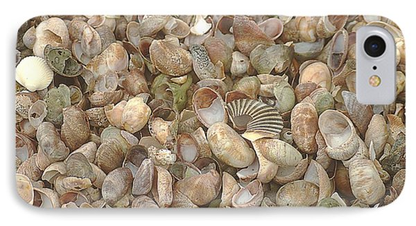 IPhone Case featuring the photograph Beached Shells by Suzanne Powers