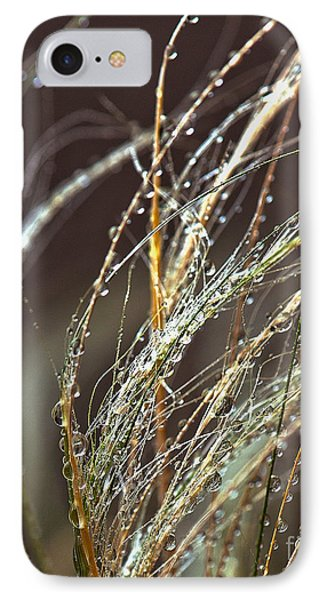 Beads Of Water On Sea Grass Phone Case by Artist and Photographer Laura Wrede