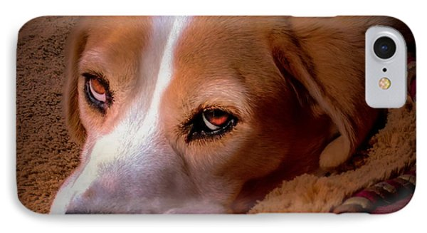 Beagle Blues IPhone Case by Karen Wiles