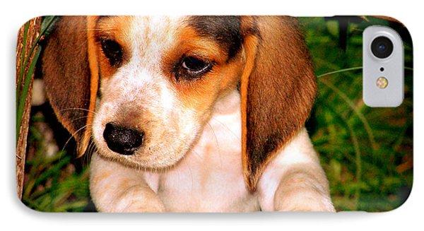 Beagle Puppy 1 Phone Case by Lynn Griffin