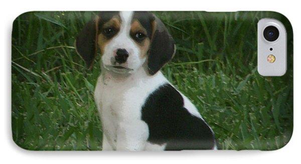 Beagle Puppy 4 Phone Case by Lynn Griffin