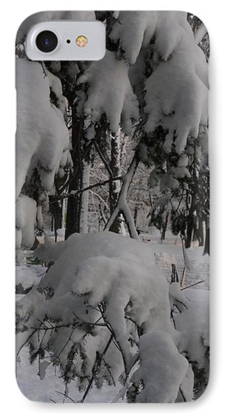 IPhone Case featuring the photograph Bear Claws by Winifred Butler