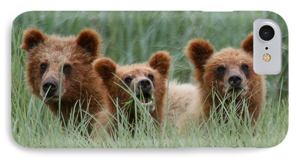 Bear Cubs Peeking Out IPhone Case