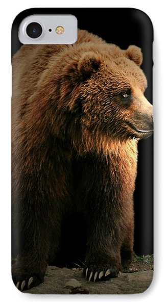 Bear Essentials IPhone Case by Diana Angstadt