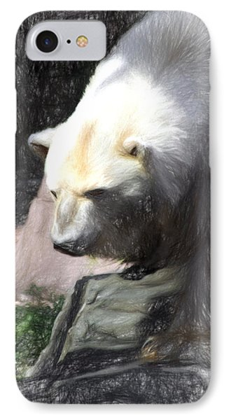 Bear Visions IPhone Case by Terry Cork