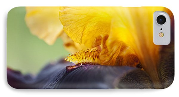Bearded Iris Dwight Enys Abstract IPhone Case