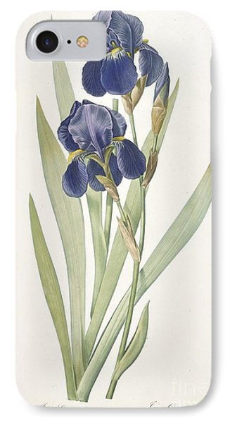 Bearded Iris IPhone 7 Case by Pierre Joseph Redoute