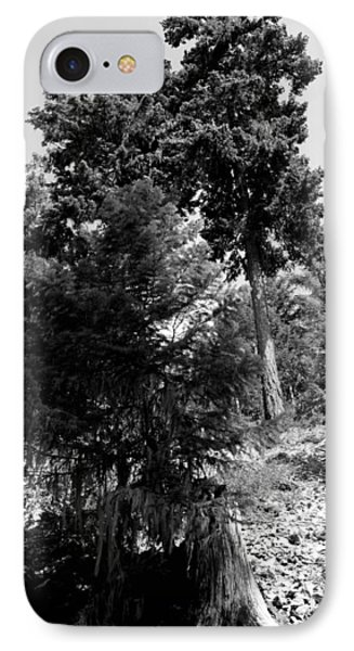 IPhone Case featuring the photograph Bearded Trees - Whistler by Amanda Holmes Tzafrir