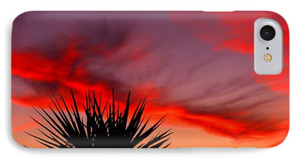 Beautiful Arizona IPhone Case