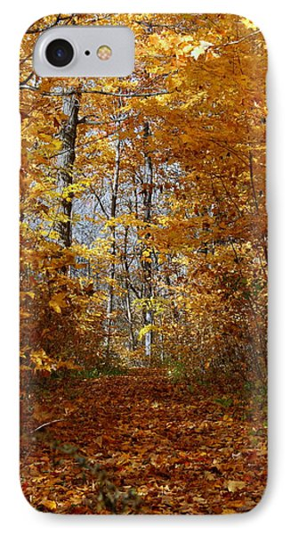 Beautiful Autumn Sanctuary Phone Case by Kay Novy