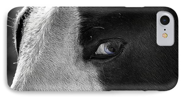 Beautiful Blind Soul Horse IPhone Case by Peggy Franz