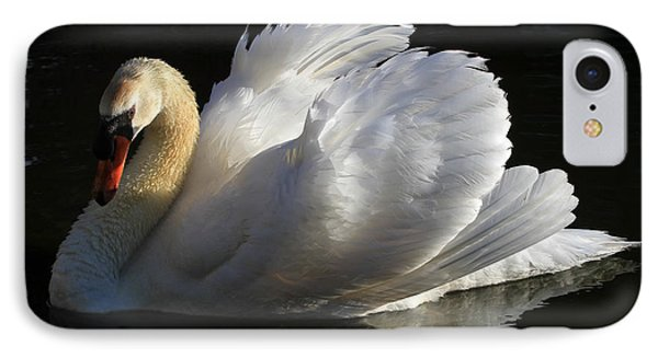 Beautiful Display IPhone Case by Donna Kennedy